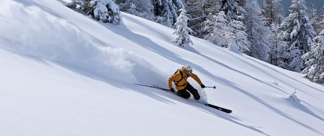 Что учесть при выборе лыж