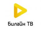 beeline.tv