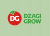 Dzagigrow.ru
