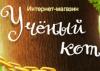 Intelkot.ru
