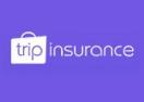 tripinsurance.ru